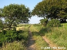 The trackbed half way between Killington Lane and Bridge 67